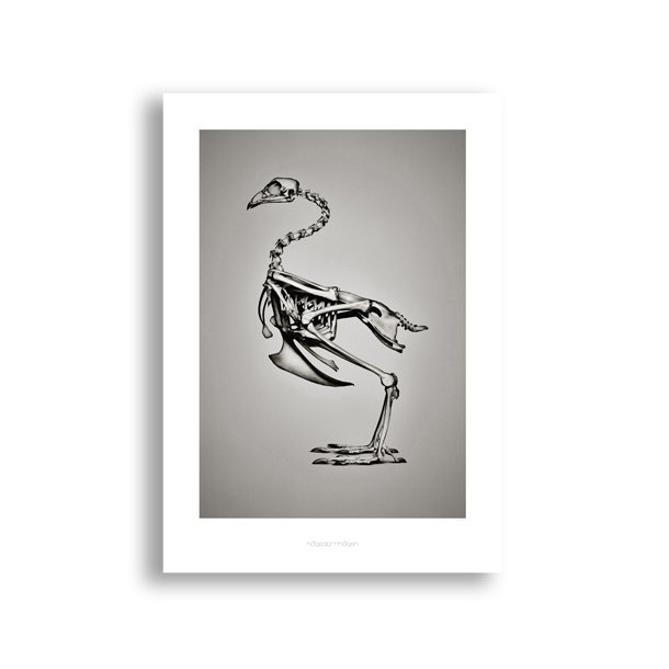 Hagedornhagen - BC1 - Plakat*