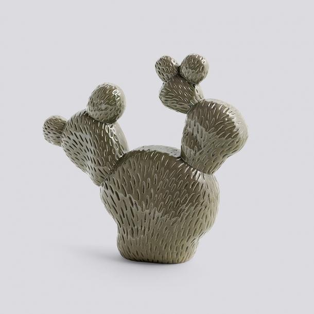 HAY - Cacti Tres
